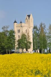 The Ulster Tower (Somme, Picardy) - JPEG
